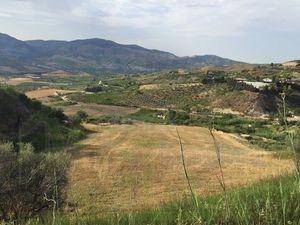 Land in Sicily - Lombardo Alessandria Cda Fretti