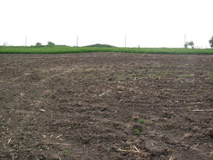 Spacious plot of land situated in village with mineral water