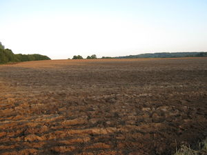 For sale 359,66 ha in Jekabpils region, Latvia!