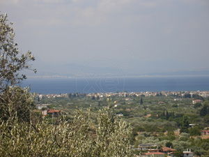 Land in Ano Vathia at Evvoia Greece
