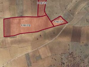 Large agricultural area for sale  in Turkey