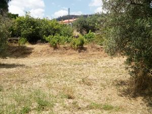 Rustic land with 4.250 m2 in Castelo Branco, Portugal