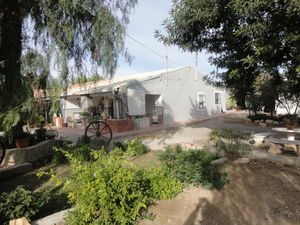 ID4179 Country House 5 bed near Elche, Costa Blanca