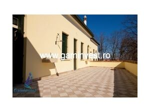 Villa/manor for sale near Venice, Italy V1838