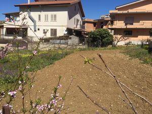 Building plot in Sicily - Lotto Pendino
