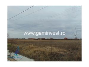 Land for sale in Nojorid, Bihor, Romania V1881