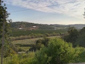 Algarve , 2 bed cottage + outbuilding, 1000sqm land