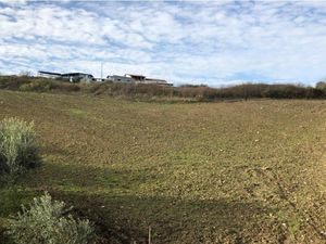 Arable and buildable - 1.25 hectares for sale
