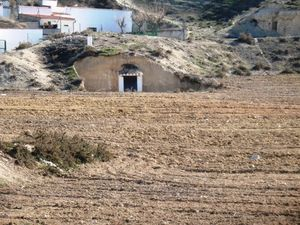 Cave house with large plot of land. SAL143