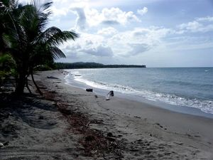 Beachfront land in Magante for sale