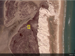 LAND FOR SALE IN SOUTH PADRE ISLAND!!