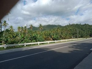 COMMERCIAL LOT FOR SALE 3.5 HECTARES..BESIDE HIGHWAY