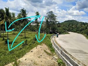 1,800 sqm lot along the highway