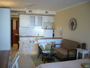 LUXURY ONE-BEDROOM APARTMENT ON THE BLACK SEA(FURNISHED)