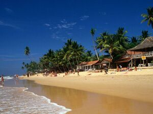 BEACH FRONT land for sale in DOWN SOUTH HIKKADUWA
