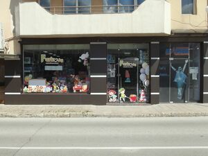 Business area with good location in a big city in Bulgaria