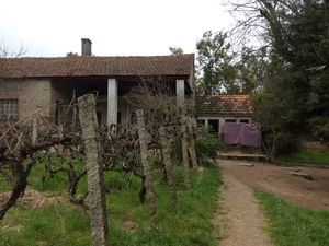Farm 10368 m2 - 3 km from the Center of Mangualde with lots