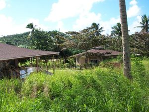 Oceanfront Lot In Tonga For $5,000 USD or B/O