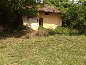 An old house with 1300 sq m of land. Near to forests, lovely