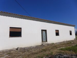 Country property to finish with an olive grove. SAL154