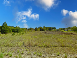 9 Lots for the Price of 1 - Lot 137-145 St Michaels Dr