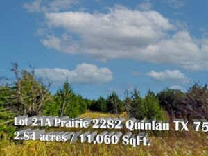 Undeveloped 2.84 Acre Property in Quinlan