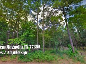 1.19 Acre Lot in Clear Creek Forest