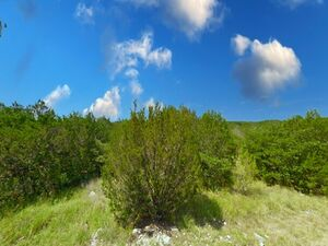 nvestment Property - Comanche Cove