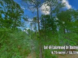Serene Wooded Property outside of Bastrop