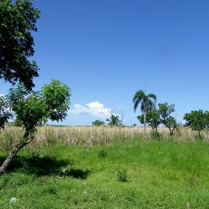 Land for construction project for sale near beach in Cabaret