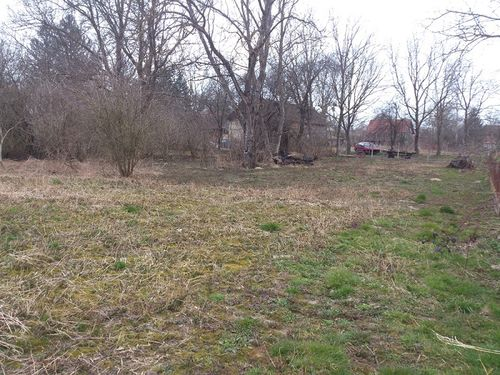 Land out back of house